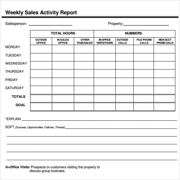 Sample Sales Report - 13+ Example, Format