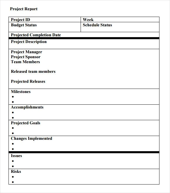 Progress Report Template Project Blank Job Application - job progress report