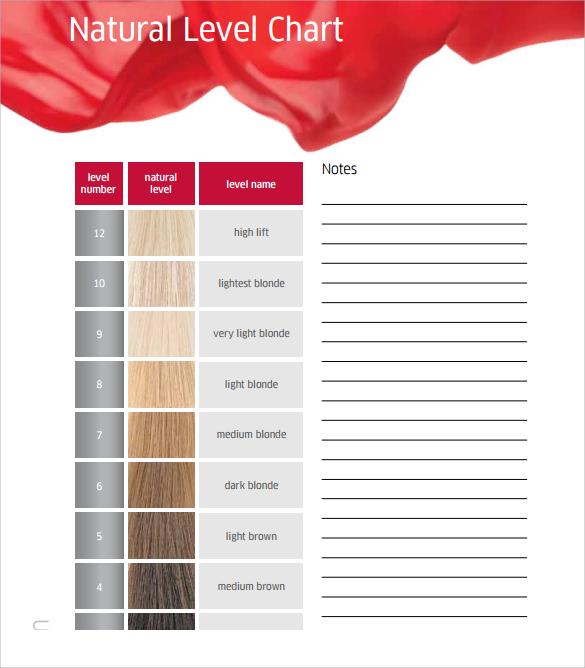 11+ Sample Hair Color Chart Templates Sample Templates