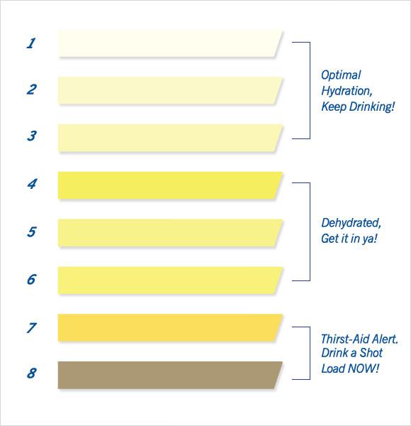 Urine-Color-Dehydration-Chart1jpg - sample urine color chart