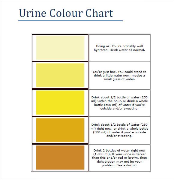 9+ Sample Urine Color Charts - PDF