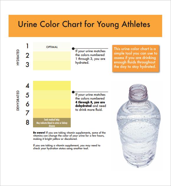 ... Sample Urine Color Chart   Mudeo ...