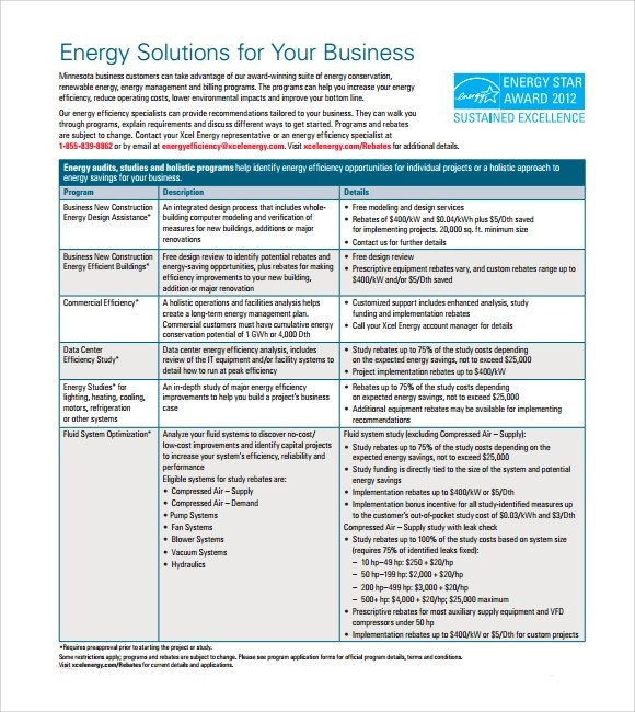 Sample Business Summary - 5+ Documents In PDF