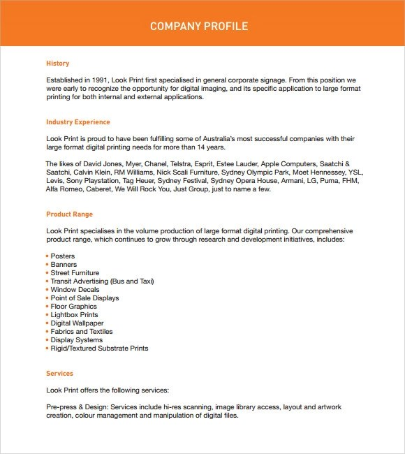 small company profile pdf