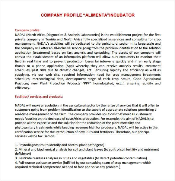 Writing A Company Profile Template Company Profile Format In Word - free profile templates