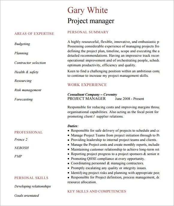 project manager cv template