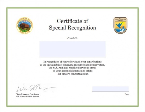 congratulations certificate template word - 28 images