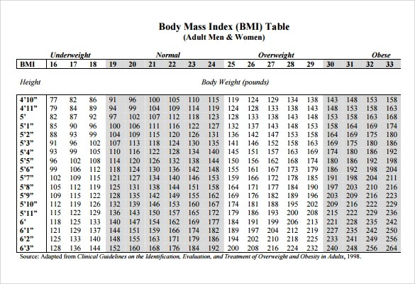 9 Sample BMI Chart Templates to Download Sample Templates - body fat percentage chart template
