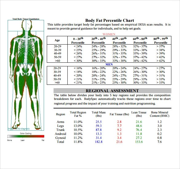 Sample Body Fat Percentage Chart Template - 7+ Free Documents in PDF