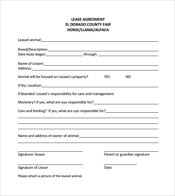 10+ Horse Lease Agreement Templates Sample Templates - sample horse lease agreement