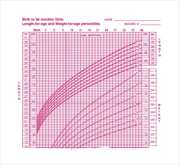 8+ Sample Baby Size Chart Templates Sample Templates