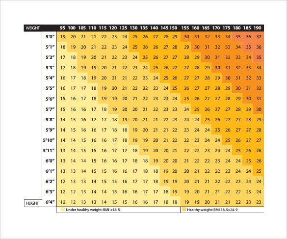 9 Sample BMI Chart Templates to Download Sample Templates - bmi chart template