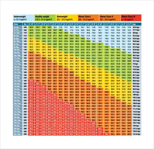9 Sample BMI Chart Templates to Download Sample Templates - 33 bmi