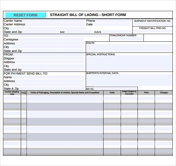 Sample Bill of Lading - 5+ Documents in PDF - blank bill of lading form template