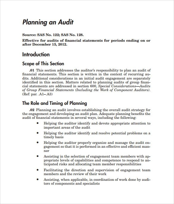 9+ Sample Audit Plan Templates - Word, PDF
