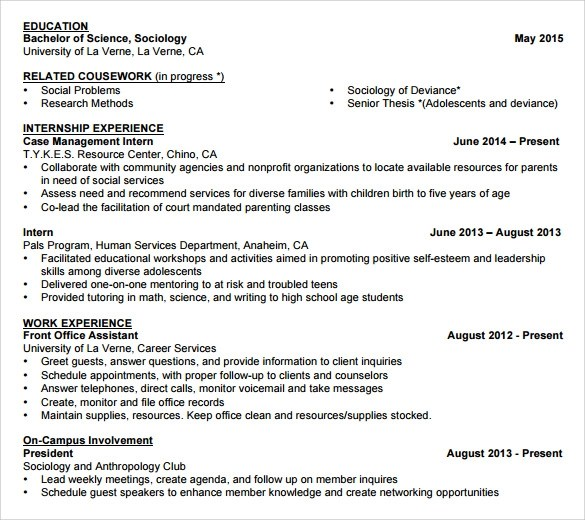 Non Chronological Resume Example Home Essaystudioorg Sample Student Template 11 Free Documents In Pdf Word