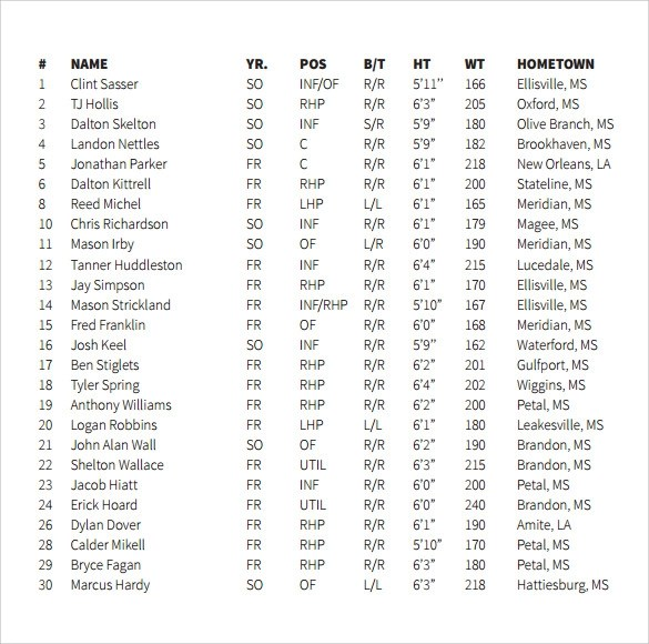 ... Baseball Roster Template Phone List Template Phone Roster   Phone Roster  Template ...