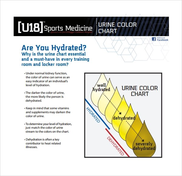 Doc#580600 Sample Urine Color Chart u2013 Urine Color Chart 7 Free - color chart template