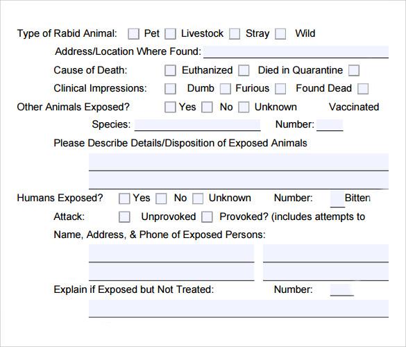 9+ Sample Animal Report Templates Sample Templates