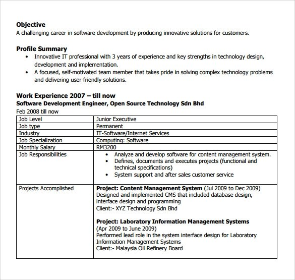 11+ Software Developer Resumes Sample Templates - resume formatting software