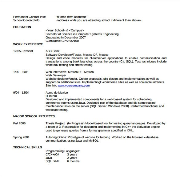 Sample Software Developer Resume - 10+ Free Documents Download in