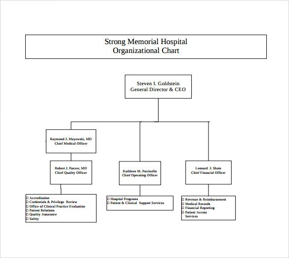 9 Hospital Organizational Chart Templates to Download Sample Templates - Ics Organizational Chart