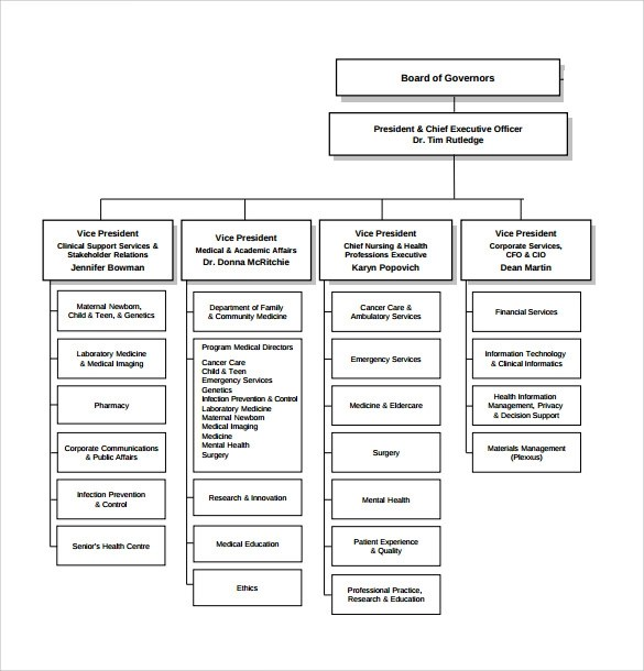 Sample Hospital Organizational Chart - 8+ Documents in PDF