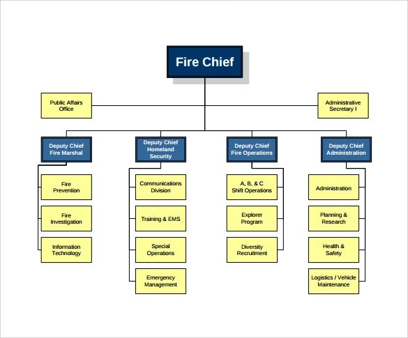 Organizational Chart Template Microsoft Word | Example Resume Of