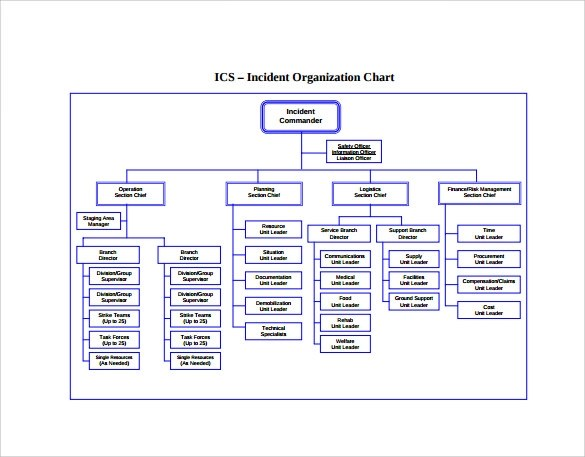 Template Organization Chart kicksneakers - ics organizational chart