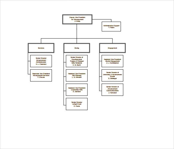 6+ Non Profit Organizational Charts Sample Templates