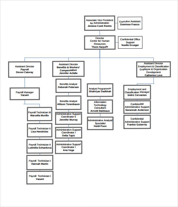 Human Resources Organizational Chart  NodeResumeTemplate