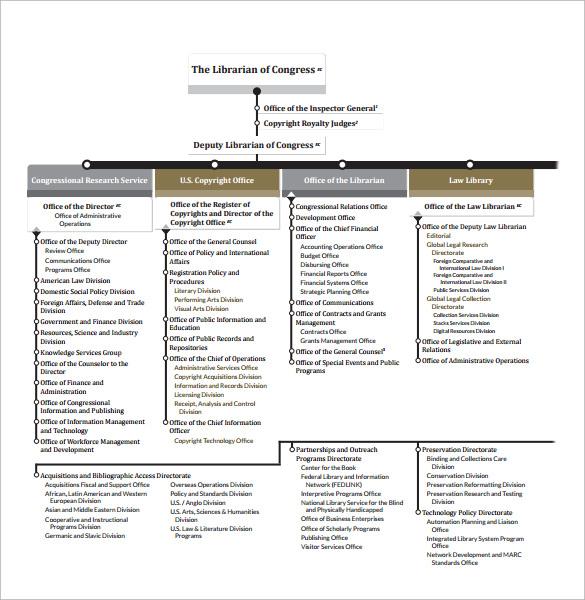 Basic Organizational Chart - Rebellions - basic organization chart