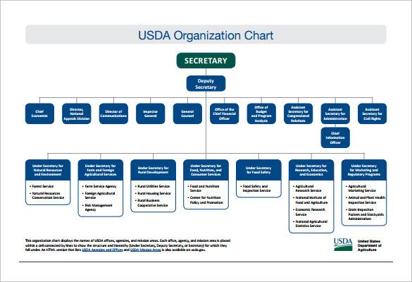 format of organisation chart