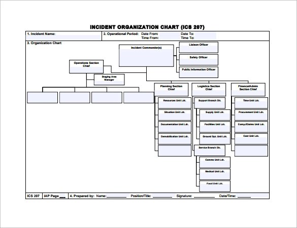 18+ Sample Basic Organization Charts Sample Templates - ics organizational chart
