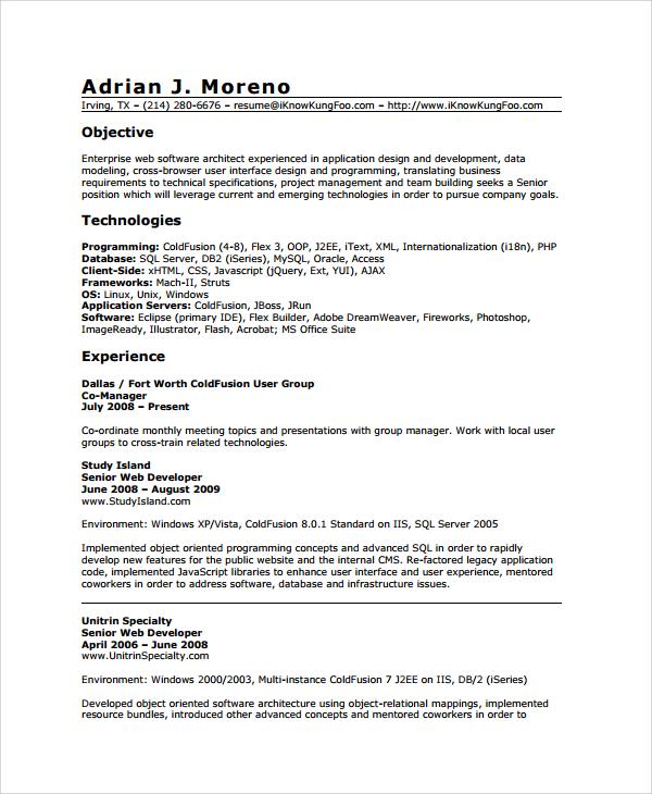 sample resume website developer