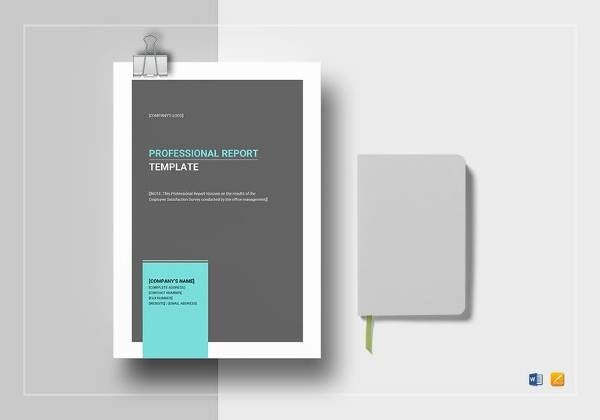 Sample Professional Report Template - 21+ Free Documents Download in