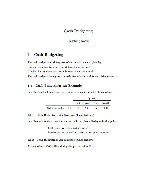 8+ Cash Budget Templates Sample Templates