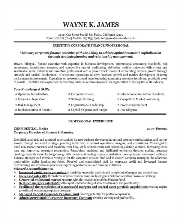8+ Finance Resume Templates Sample Templates