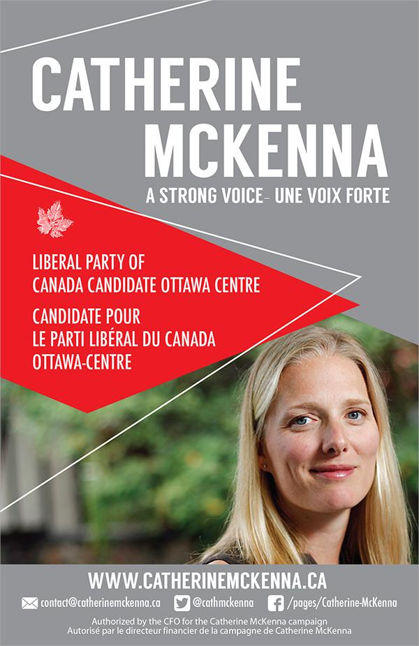 political brochure template