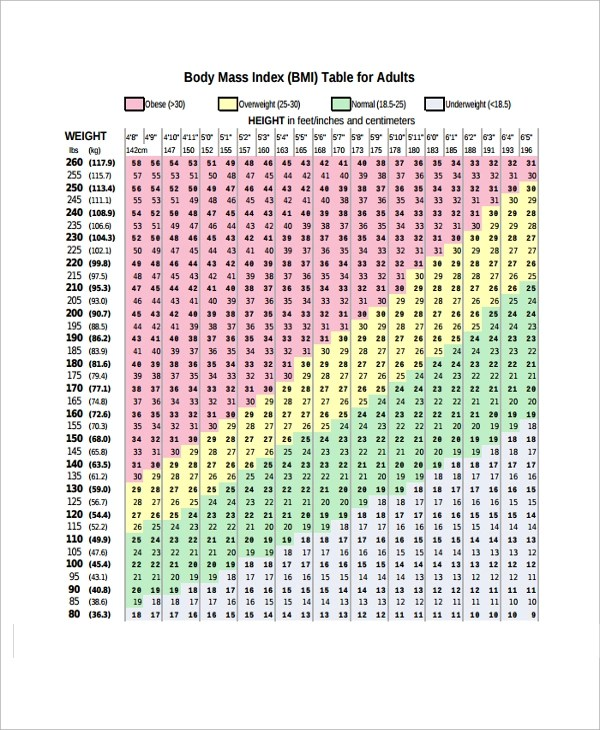 11+ BMI Chart Template - Free Sample, Example, Format Download