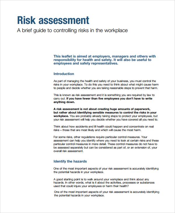 7+ Sample Risk Assessment Report Templates Sample Templates