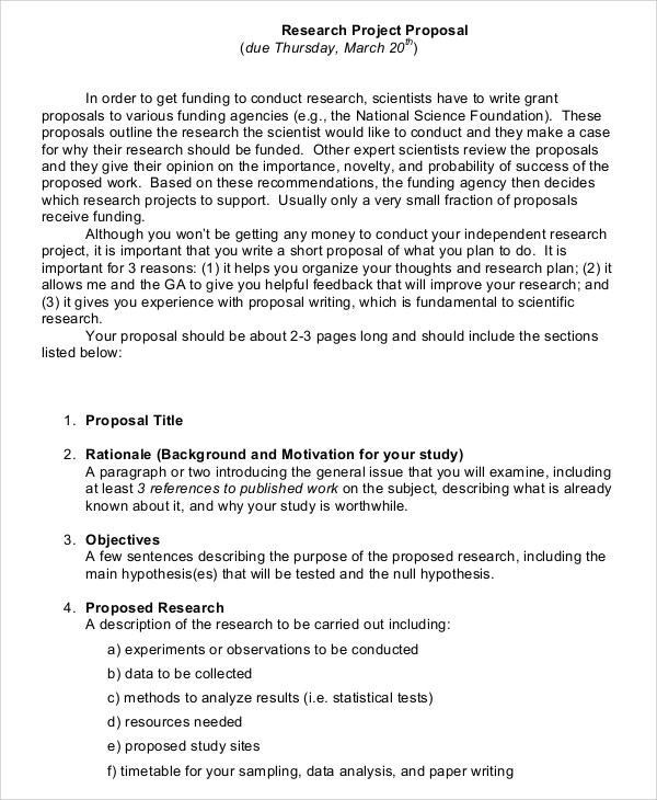 Project Proposal Example 6+ Business Proposal Template Pdf - non profit proposal template
