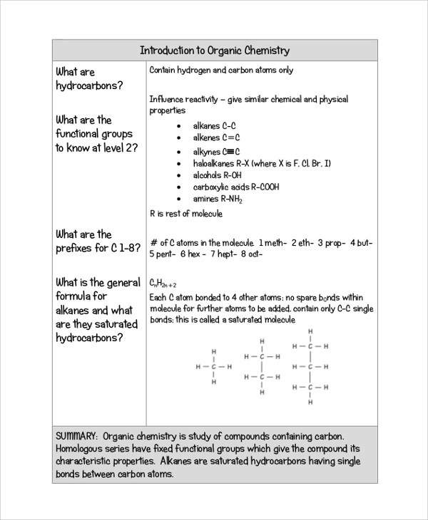 20+ Sample Cornell Notes Sample Templates - Sample Cornell Note