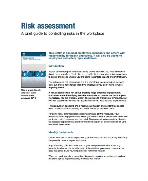 Sample Business Risk Assessment - 7+ Documents in PDF, Word