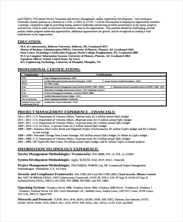 sample resume for it security analyst