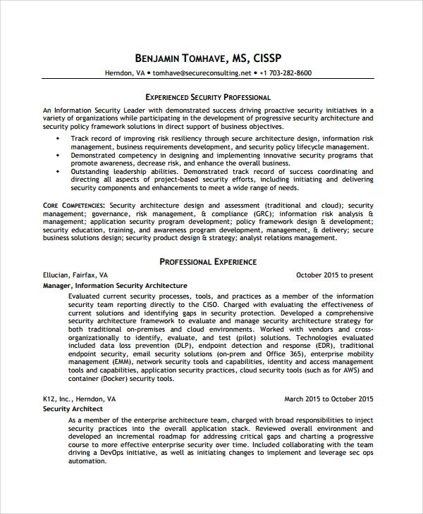information security resume templates