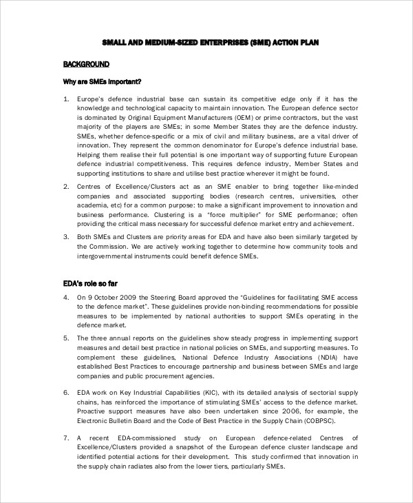 6+ Sample Business Action Plans Sample Templates - sample business action plan