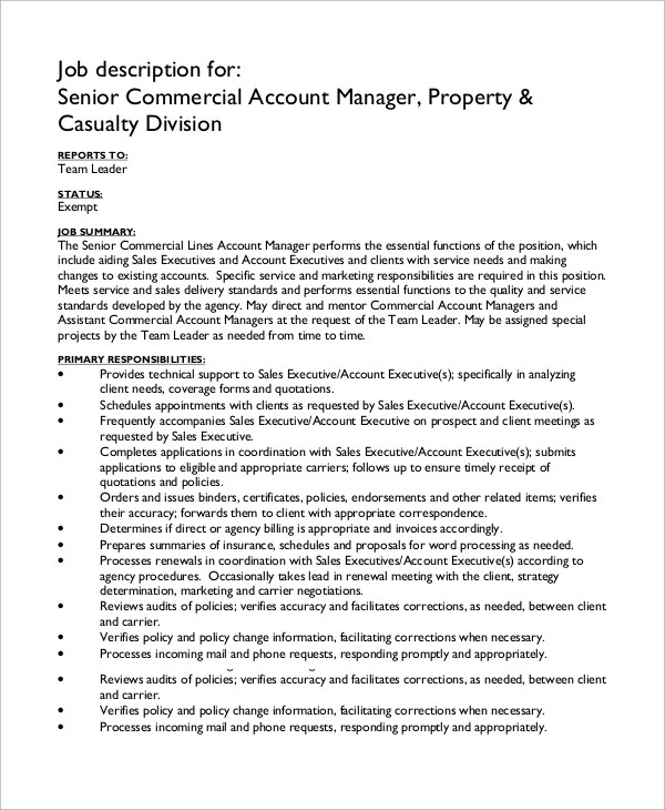 7+ Account Manager Job Description Samples Sample Templates