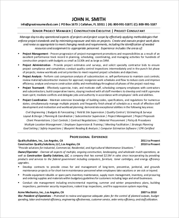 8+ Sample Project Manager Resumes Sample Templates