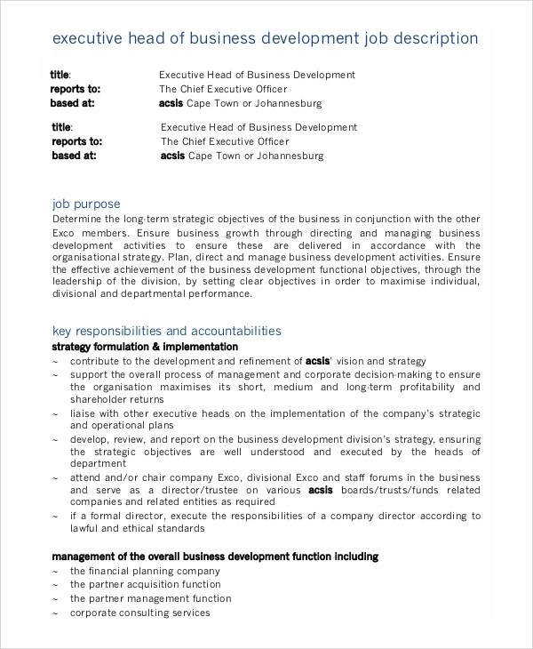 Sample Business Development Job Description - 9+ Examples in PDF, Word - chief executive officer job description